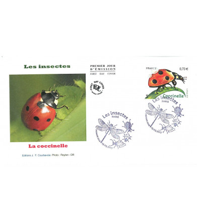 INSECTE COCCINELLE